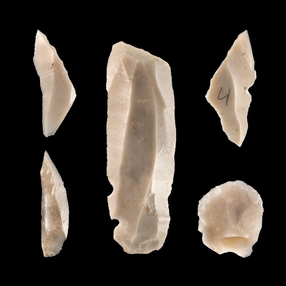 Mesolithischer Fund aus Sandhorst